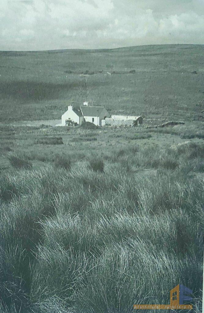 تصویری از خانه سارا میتلند
